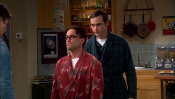 Episodio 11 (TTemporada 5) de The Big Bang Theory