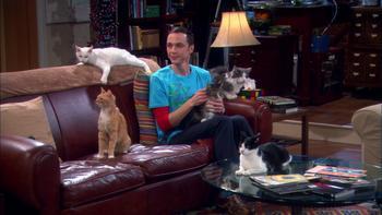Episodio 3 (TTemporada 4) de The Big Bang Theory