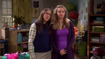 Episodio 17 (TTemporada 5) de The Big Bang Theory